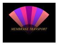 membrane transport 2009