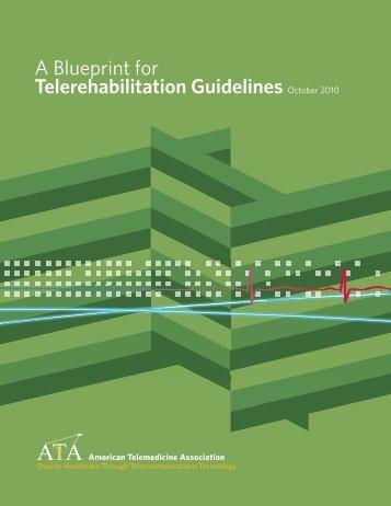 A Blueprint for Telerehabilitation Guidelines October 2010