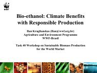 Climate Benefits with Responsible Production - IEA Bioenergy Task 40