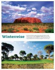 82 steffe Winterreisen golf