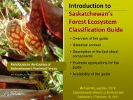 Introduction to Saskatchewan's Forest Ecosystem Classification Guide