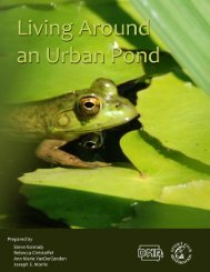 Living around an urban pond - Natural Resource Ecology and ...