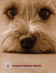 FY2008 Annual Report - University of Georgia College of Veterinary ...