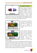 Memòria de Surt 2008 - Page 6