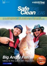Big Angry Fish - Maritime New Zealand