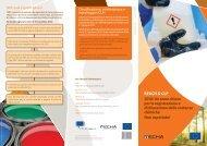 DG_Entr_REACH leaflet to assist SMEs_V3.indd - Tessile e Salute