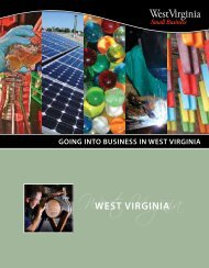 Going Into Business in West Virginia - West Virginia Department of ...
