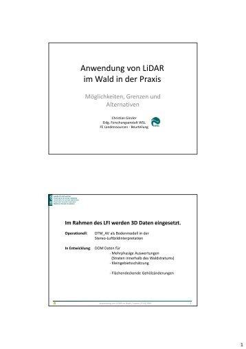 Anwendung von LiDAR im Wald in der Praxis - Planfor