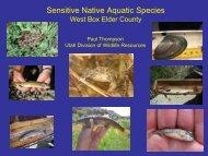 Sensitive Native Aquatic Species - Utah CBCP