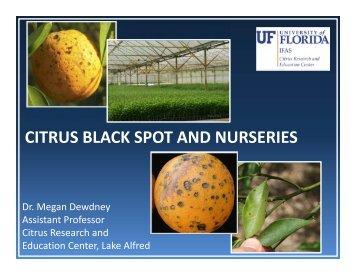 CITRUS BLACK SPOT AND NURSERIES - Florida Nursery ...