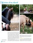 Cavaliere 32 - Pascal Lahure - Page 4