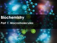 Biochemistry - Science with Mr. Enns