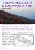 Utgave nr 2 - Den norske Rhododendronforening - Page 6