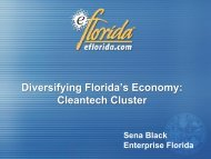 Diversifying Florida's Economy: Cleantech Cluster