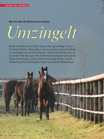 Umzingelt - Reiter Revue International