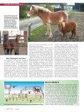 Umzingelt - Reiter Revue International - Seite 3