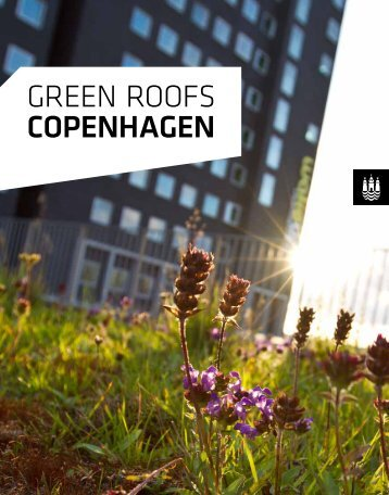 green roofs COPENHAGEN - Itera Consulting