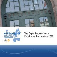 The Copenhagen Cluster Excellence Declaration 2011