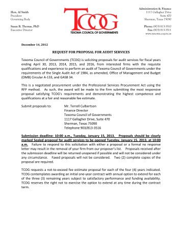 audit proposal sample