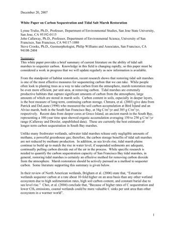 carbon tax essay Sample environmental sciences essay the environmental sciences essay below has been submitted to us by a student in order to help you with your studies.