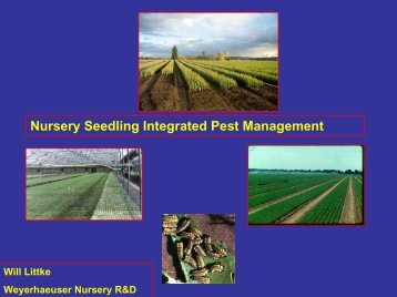 Lecture 18 - Nursery integrated pest management (Will Littke)