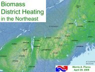 The Potential for Biomass District Energy in Western Massachusetts