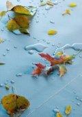 WATERPROOFING - RENOLIT - Page 4