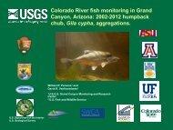 2002-2012 humpback chub, Gila cypha, aggregations.