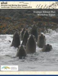 Strategic Science Plan Workshop Report - Aleutian and Bering Sea ...