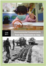Environmental Contaminants from War Remnants in Iraq