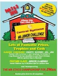 2013 Junior Challenge FINAL.pdf
