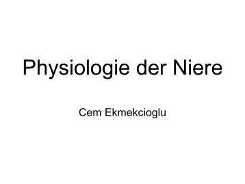 Physiologie der Niere