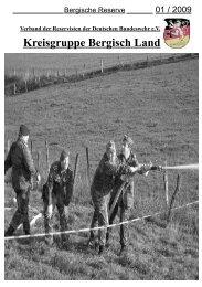Download des Heftes 1/2009 - Verband der Reservisten der  ...