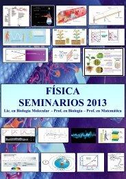 FÍSICA SEMINARIOS 2013 - Universidad Nacional de San Luis
