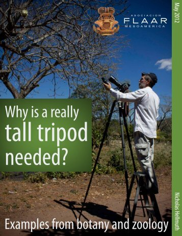 Why is really a tall tripod needed? - Digital Photography
