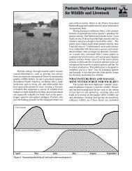 Pasture/Hayland Management for Wildlife and Livestock