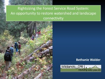 Rightsizing the Forest Service Road System - Global Restoration ...