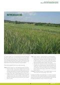 Dossier tècnic número 31: Noves varietats de cereals d ... - RuralCat - Page 3