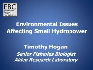 Environmental Issues Affecting Small Hydropower Timothy Hogan