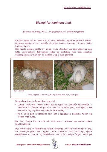 Biologi for kaninens hud - Medirabbit