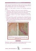 Biologi for kaninens hud - Medirabbit - Page 3
