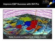 Improve E&P Success with SVI Pro - Net Brains