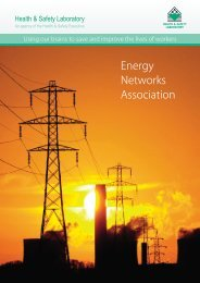 Energy Networks Association - Health and Safety Laboratory