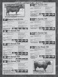 Kington Angus Ranch - Angus Journal - Page 6