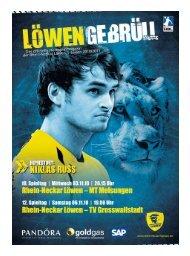 (Saison 2010/2011): MT Melsungen / TV - Rhein-Neckar Löwen