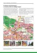 Ricarda Frede - Immobilien & Projektentwicklung, Kassel - Page 4