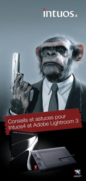 Conseils et astuces pour Intuos4 et Adobe Lightroom 3