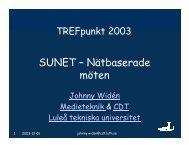 Nätmötesprojektet - SUNET-projekt mm