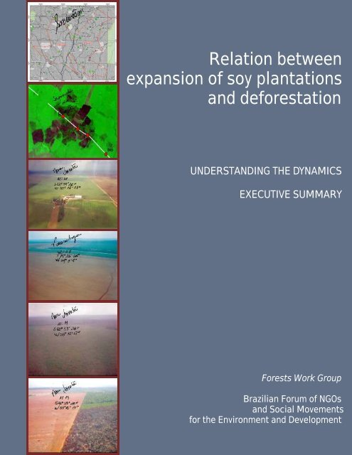 Relation between expansion of soy plantations and deforestation