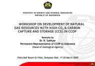 Dr. R. Sukhyar, Permanent Representative of Indonesia to CCOP
